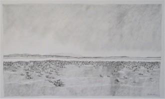 Mongers Lake Diptych 2_75x45 pencil