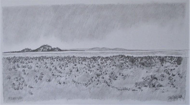 Monger's Lake_33x20_pencil