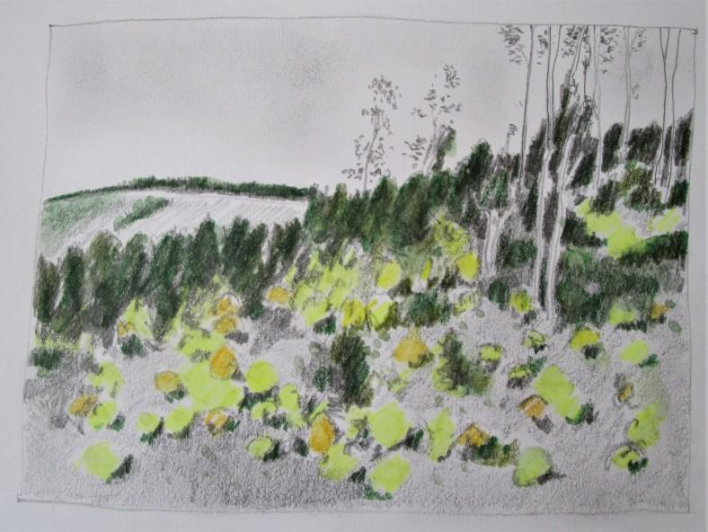 Nanga road sketch