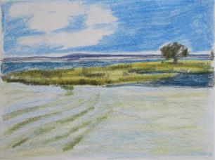 estuary island1